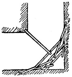 chicken foot illustration